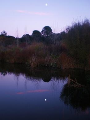 Luna llena a orillas del Bullaque